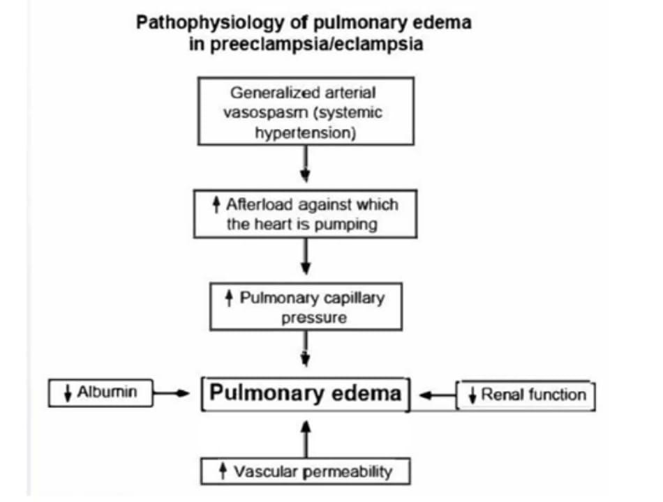 Pathophysiology of pulmonary edema in preeclampsia/eclampsia